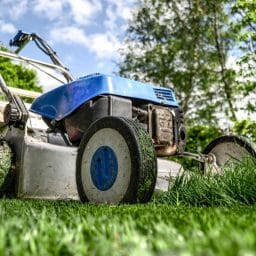 Lawn mower in green grass